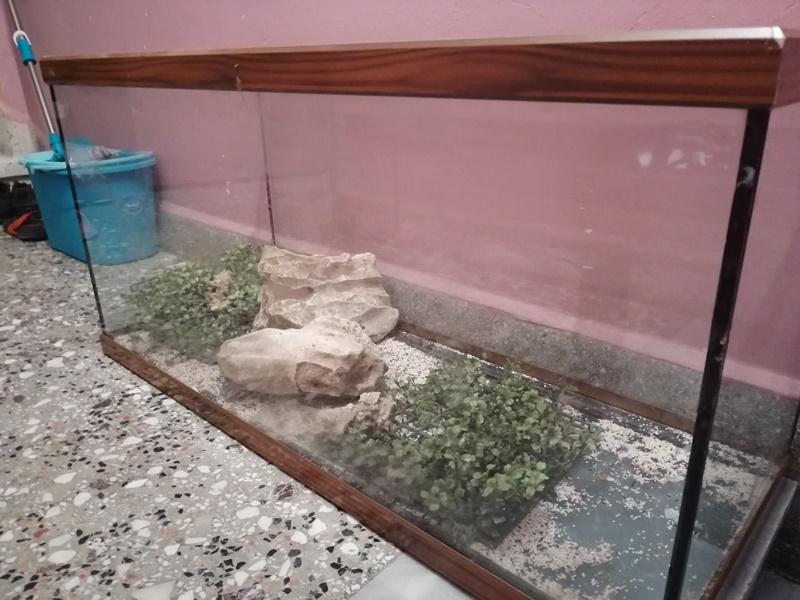 2.el 160 litrelik akvaryum büyük boy 1 metre